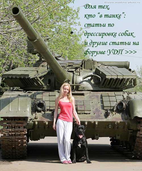 http://www.veoclub.ru/2/N_tank.jpg