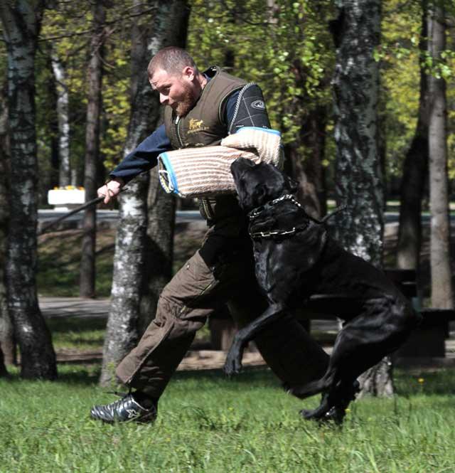 http://www.veoclub.ru/2011_Binar/20.jpg