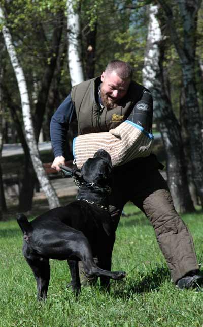 http://www.veoclub.ru/2011_Binar/24.jpg