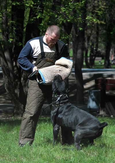 http://www.veoclub.ru/2011_Binar/52.jpg