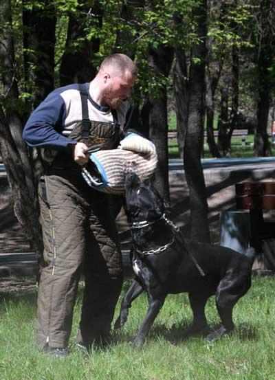 http://www.veoclub.ru/2011_Binar/53.jpg