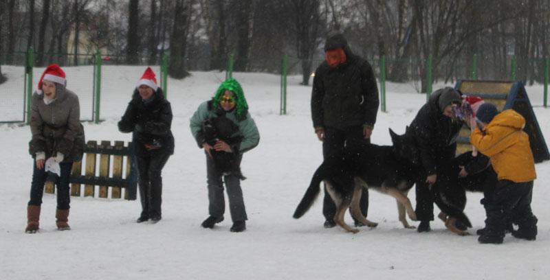 http://www.veoclub.ru/2012/14NY.jpg