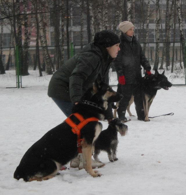 http://www.veoclub.ru/2012/16NY.jpg