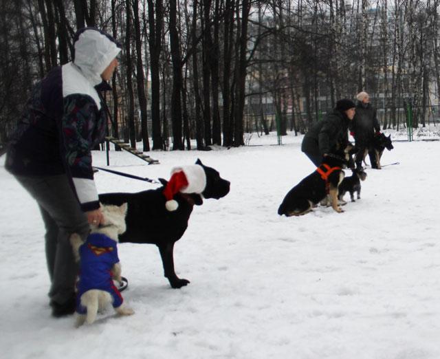 http://www.veoclub.ru/2012/18NY.jpg