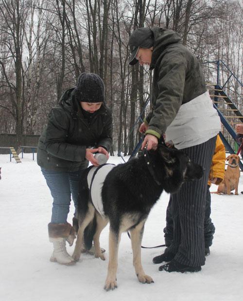 http://www.veoclub.ru/2012/57NY.jpg