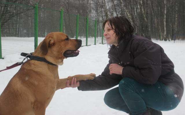 http://www.veoclub.ru/2012/NY6.jpg