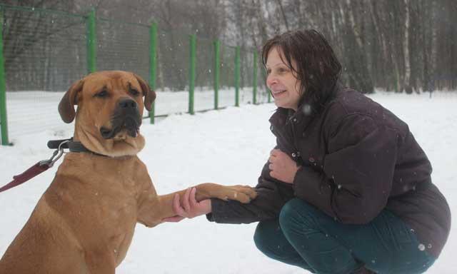 http://www.veoclub.ru/2012/NY9.jpg