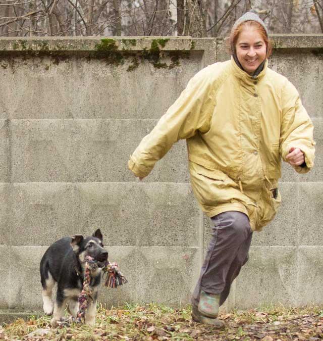Собаки и щенки купить в Рубцовске  объявления о продаже