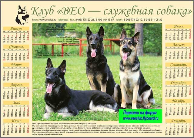 http://www.veoclub.ru/400.files/kalendar_VEO1.jpg