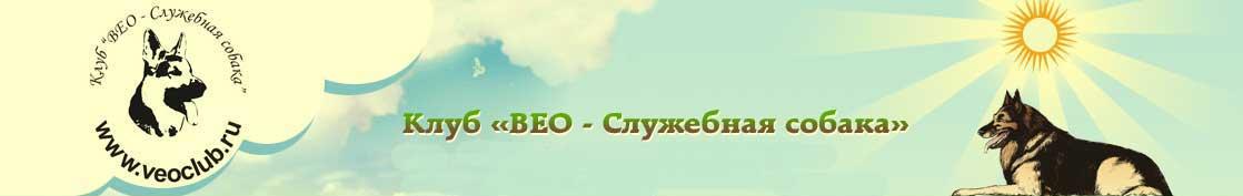 www.veoclub.ru