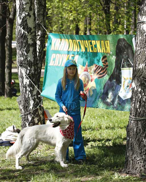 http://www.veoclub.ru/pokaz/85.jpg