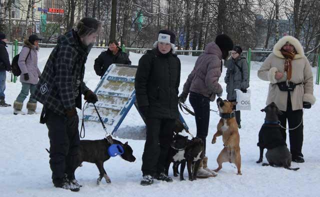 http://www.veoclub.ru/180212/17.jpg