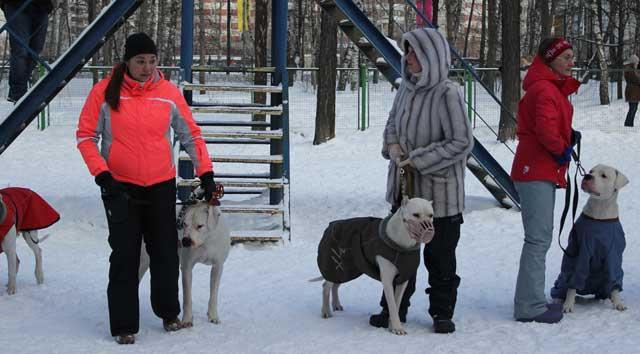 http://www.veoclub.ru/180212/18.jpg