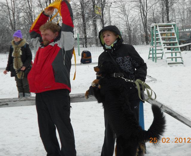 http://www.veoclub.ru/180212/2502_8.jpg