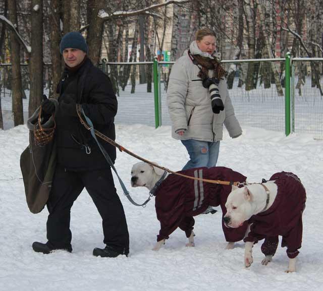 http://www.veoclub.ru/180212/4.jpg