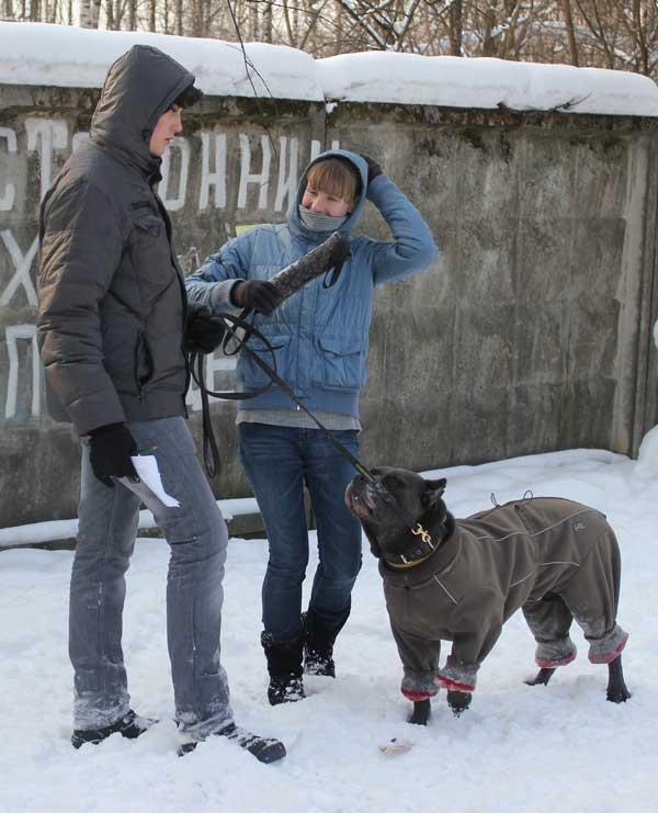 http://www.veoclub.ru/180212/7.jpg