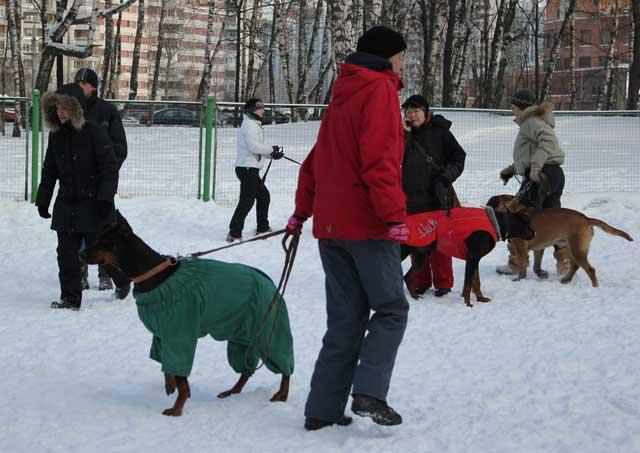 http://www.veoclub.ru/180212/9.jpg