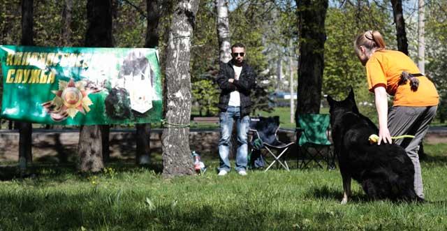 http://www.veoclub.ru/2011_Binar/12.jpg