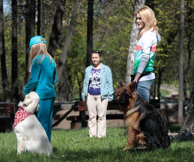 http://www.veoclub.ru/2011_Binar/14.jpg