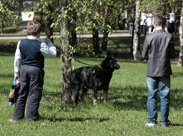 http://www.veoclub.ru/2011_Binar/17.jpg