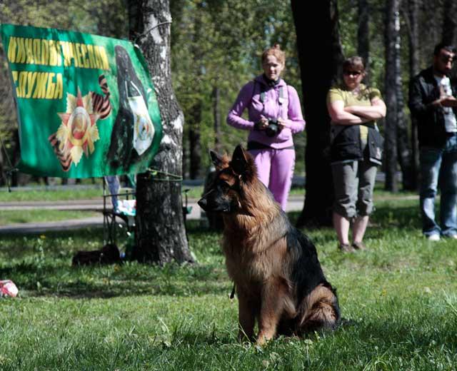 http://www.veoclub.ru/2011_Binar/36.jpg