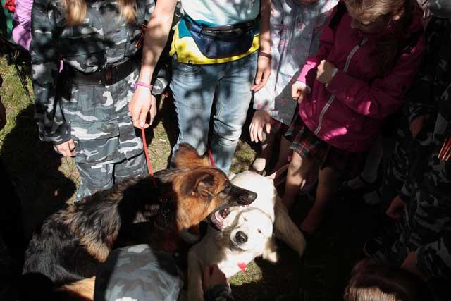 http://www.veoclub.ru/2011_Binar/38.jpg