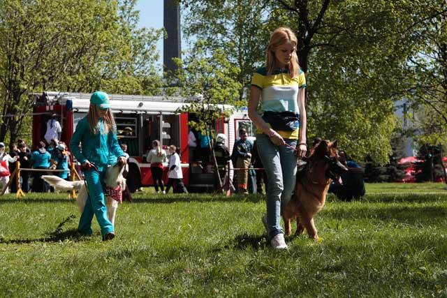 http://www.veoclub.ru/2011_Binar/44.jpg