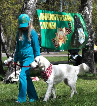 http://www.veoclub.ru/2011_Binar/45.jpg