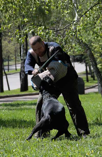 http://www.veoclub.ru/2011_Binar/57.jpg