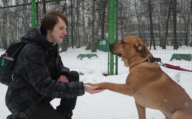 http://www.veoclub.ru/2012/NY3.jpg