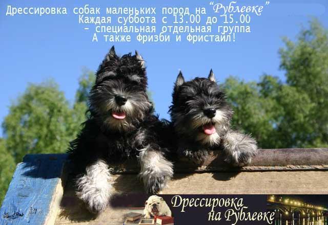 http://www.veoclub.ru/400.files/dr_mal.jpg