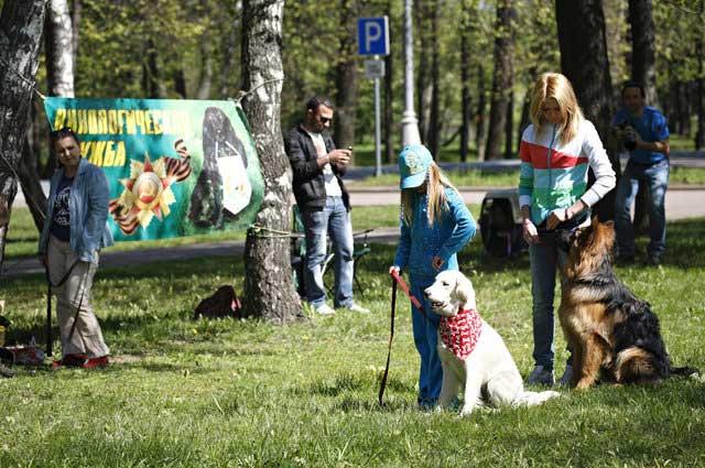 http://www.veoclub.ru/pokaz/5.jpg